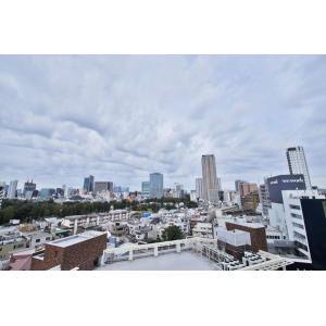 パークコート乃木坂ザタワー 部屋写真7 眺望