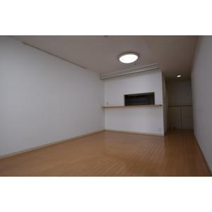 東新宿レジデンシャルタワー 部屋写真1 居室・リビング