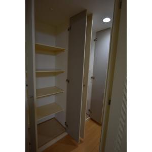 東新宿レジデンシャルタワー 部屋写真15 廊下収納