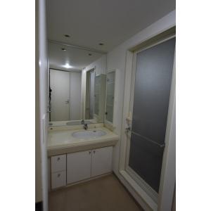 東新宿レジデンシャルタワー 部屋写真4 洗面所