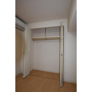 東新宿レジデンシャルタワー 部屋写真8 収納