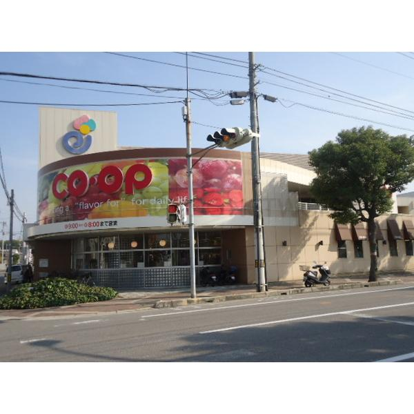 ワールドテラス(愛媛県新居浜市江口町)の物件情報