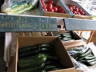 ズッキーニやトマトの夏野菜